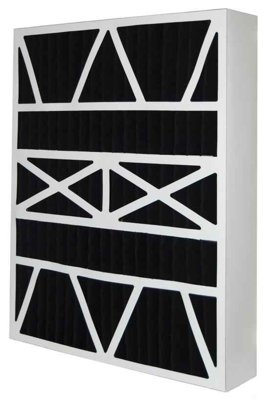 20 x 25 x 6 - Replacement Carbon Filters for White Rodgers 2-Pack